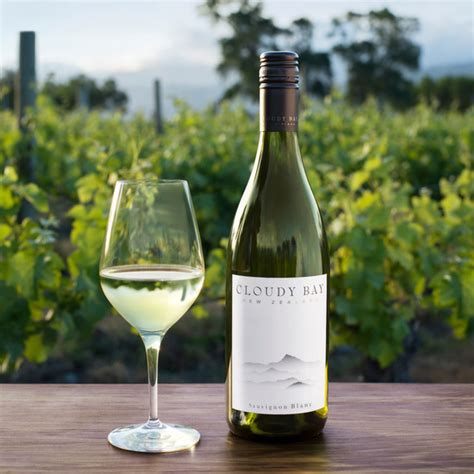 Everything You Need to Know About Sauvignon Blanc | Martha
