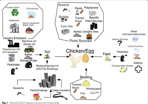 Reviewing the relevance of dioxin and PCB sources for food