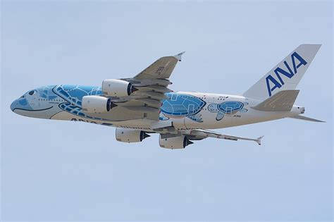 ANA Fleet Airbus A380-800 Details and Pictures